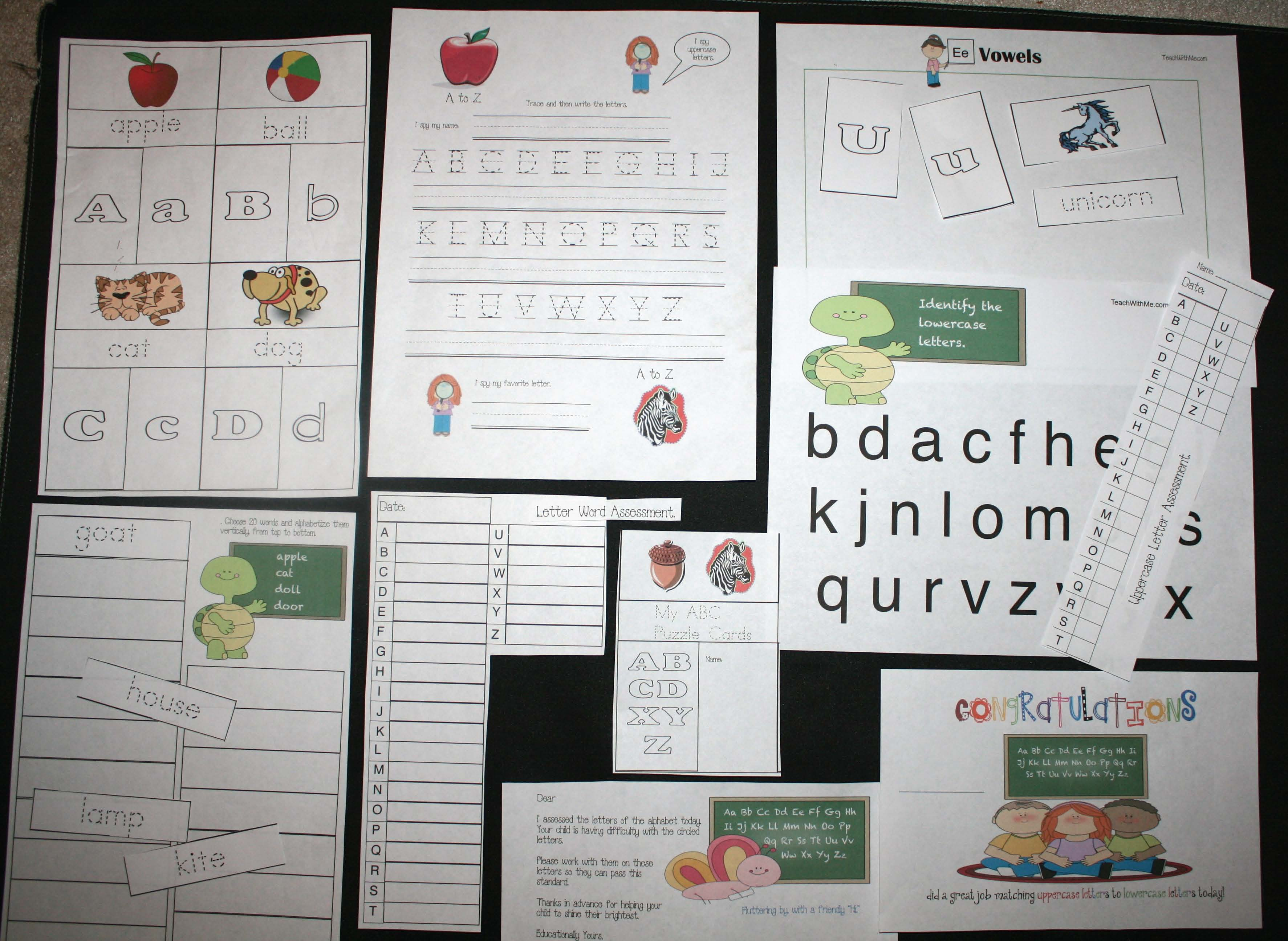 alphabet puzzles, free common core lessons for kindergarten, free common core lessons for 1st grade, alphabet cards, alphabet assessments, common core assessments, alphabet cards, alphabet games, alphabet lessons, matching upper to lowercase letter activities, matching words to their letter activities, Daily 5 activities, Daily 5 word work activities, Dolch Noun Word List, Dolch word puzzle cards, Dolch word activities, Dolch word lessons, alphabet sorting mats, sorting mats,