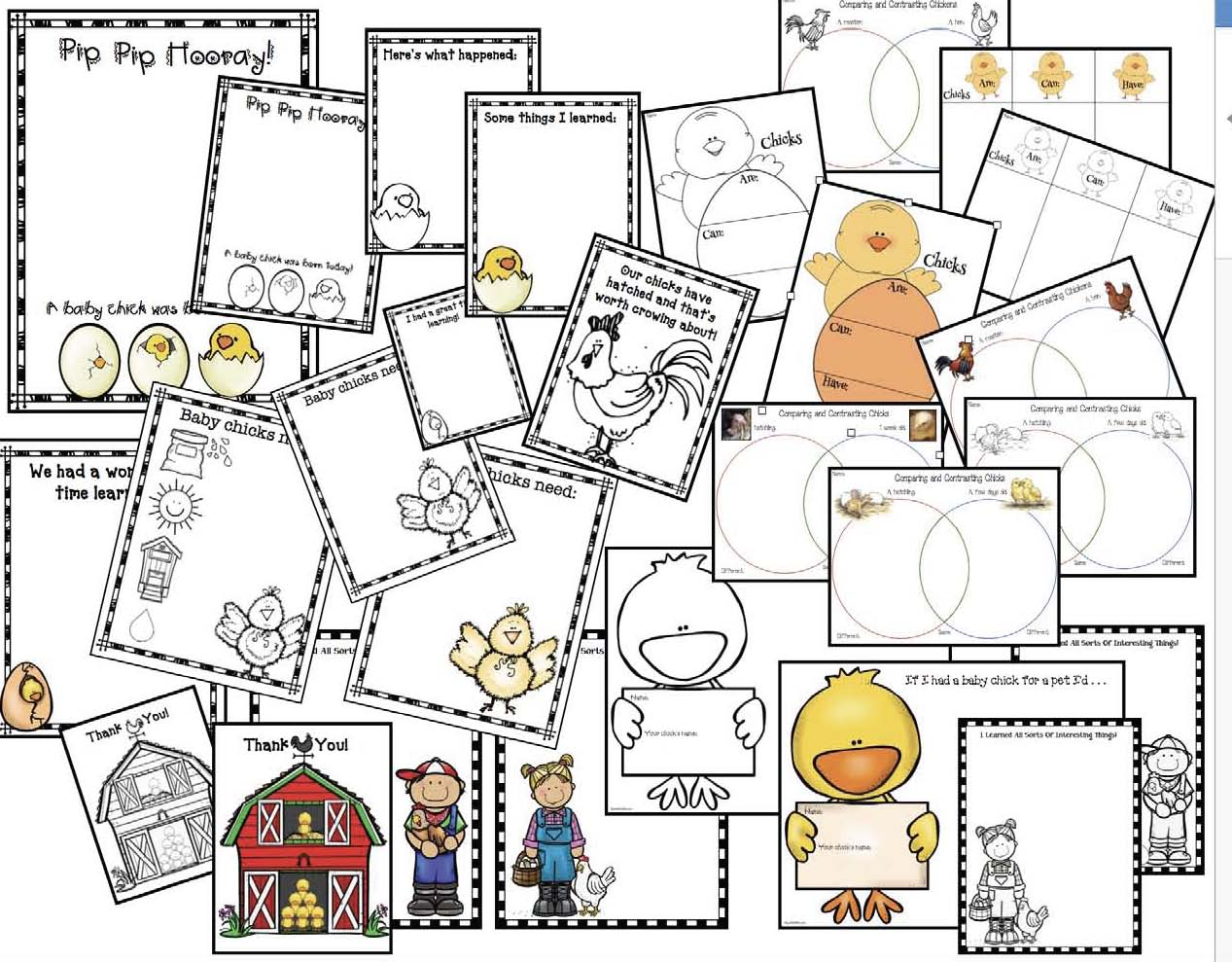 chicken life cycle activities, chicken crafts, chick hatching activities, chick hatching photographs, chicken games, chick games, life cycle of a chicken posters, life cycle of a chick games, life cycle of a chick crafts