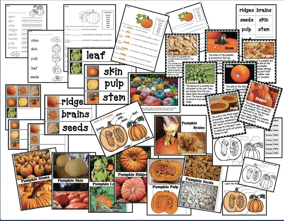 pumpkin crafts, pumpkin activities, pumpkin centers, label a pumpkin activities, 3D paper pumpkin pattern, pumpkin science, fall centerpieces, fall crafts for kids, halloween crafts