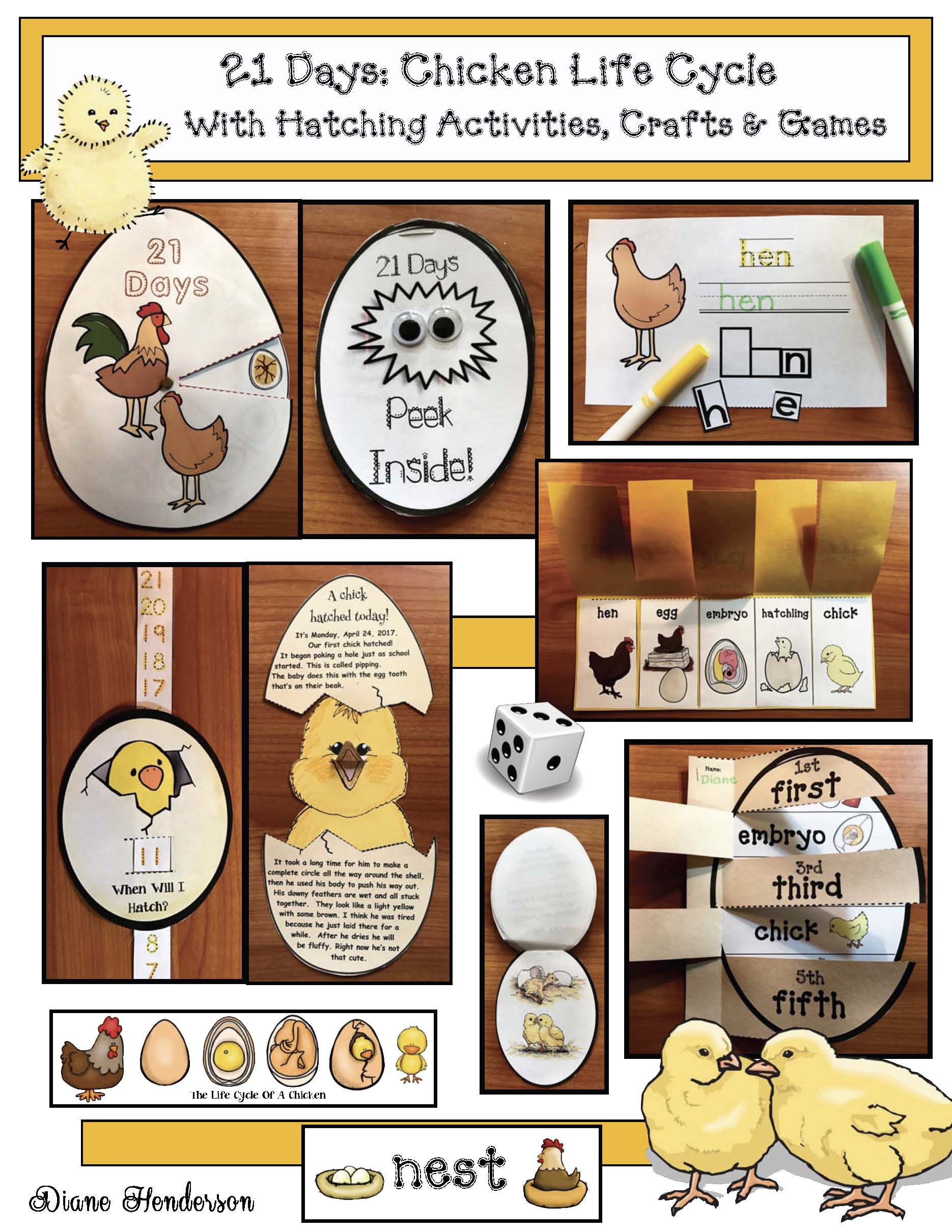 chicken life cycle activities, chicken crafts, chick hatching activities, chick hatching photographs, chicken games, chick games, life cycle of a chick games, life cycle of a chick crafts