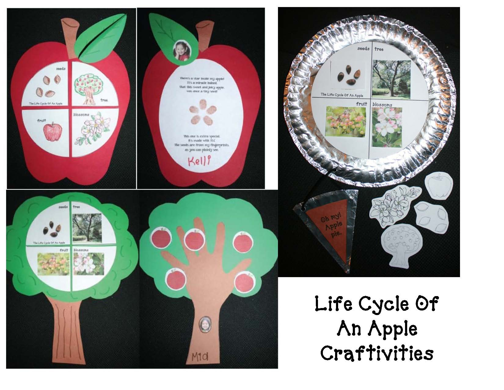 apple bibliography, list of apple books, apple crafts, life cycle of an apple, measurement activities, measuring apples, Johnny appleseed activities, johnny appleseed crafts, 125 apple facts, apple facts,