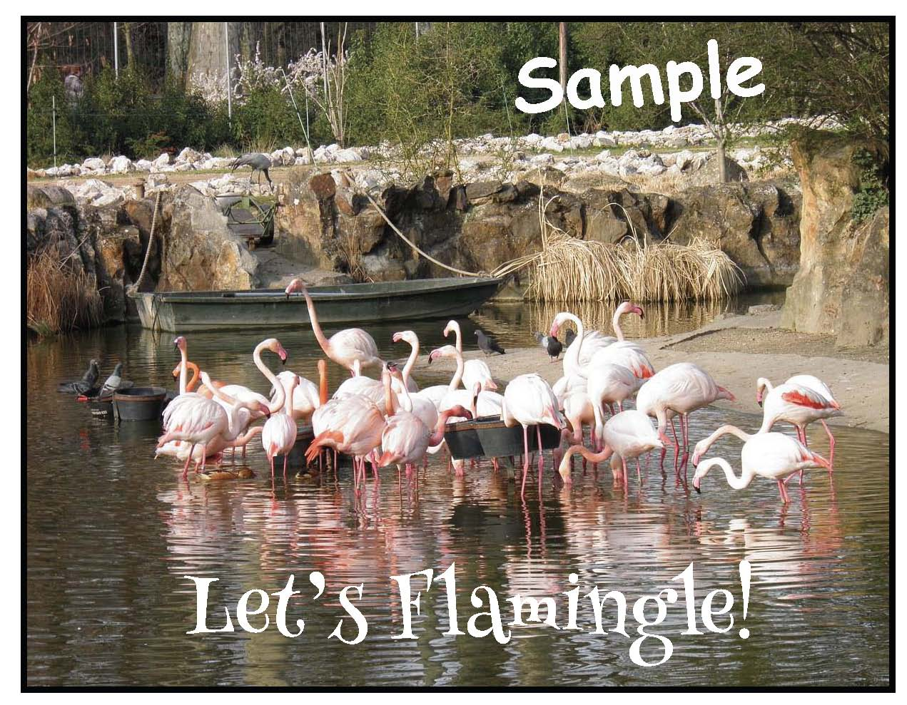 flamingo crafts, flamingo activities, icebreakers, back to school activities, back to school icebreakers, back to school bulletin boards, back to school writing prompts, Let's Flamingle, flamingle