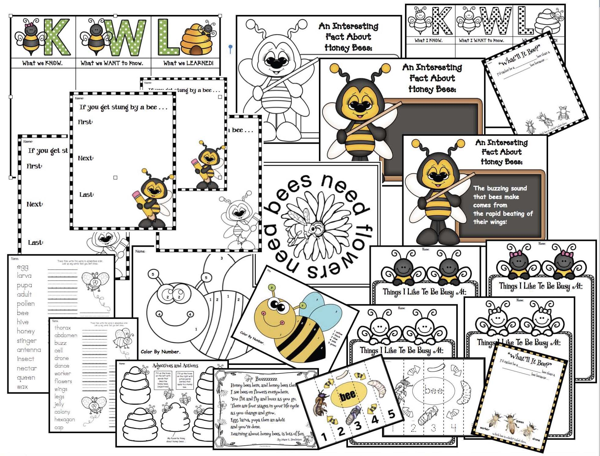 honey bee worksheets and activities Page 1