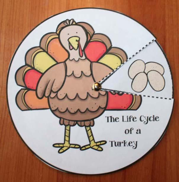 turkey activities, turkey crafts, photographs of real turkeys, end punctuation activities, fix the sentence activities, parts of a turkey, turkey centers, life cycle of a turkey, turkey games, turkey bulletin boards, turkey writing prompts