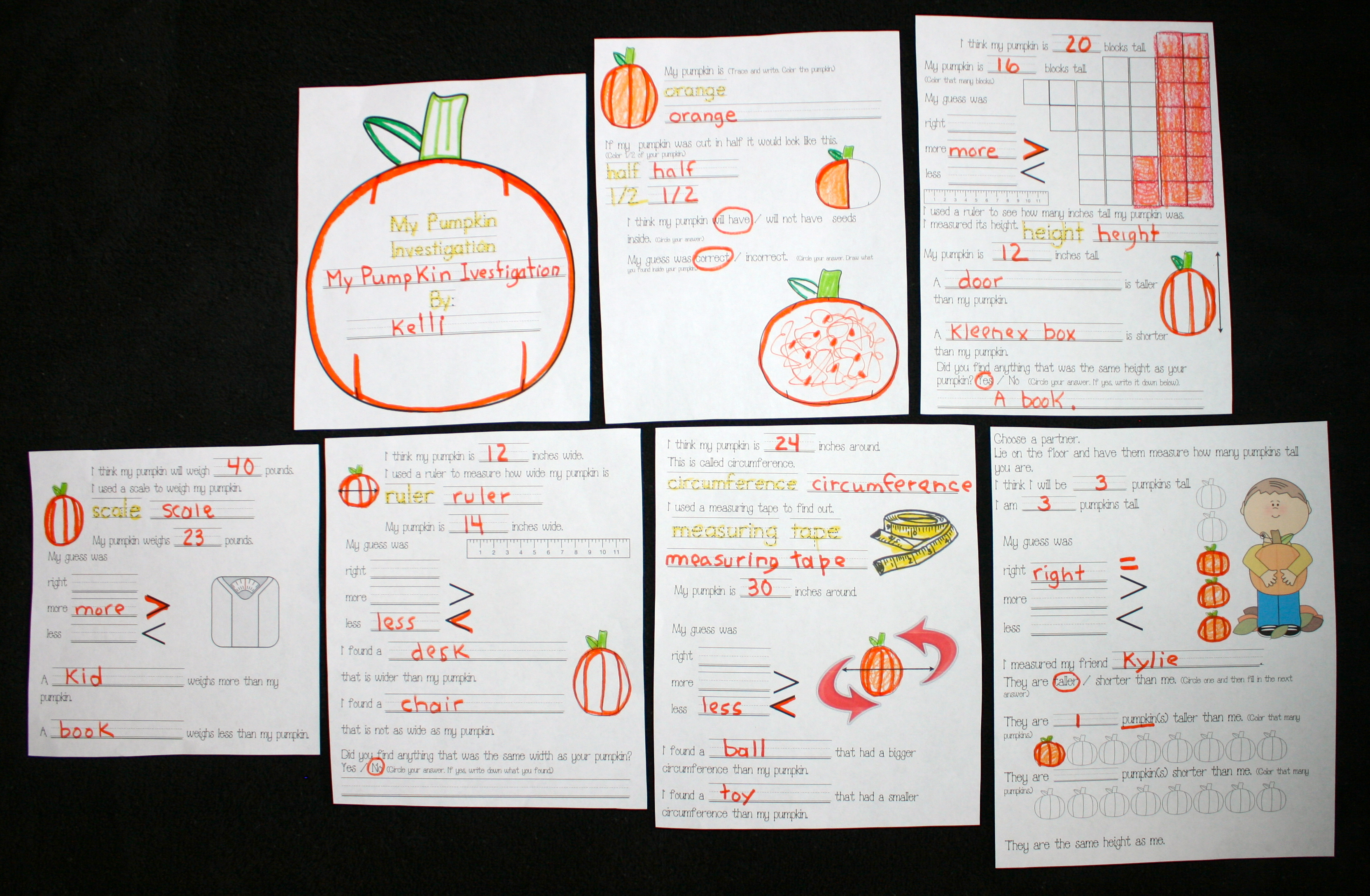 pumpkin activities, pumpkin lessons, pumpkin centers, pumpkin math, common core pumpkins, measuring pumpkins, measurement activities, measuring lessons, measuring worksheets, pumpkin booklets,