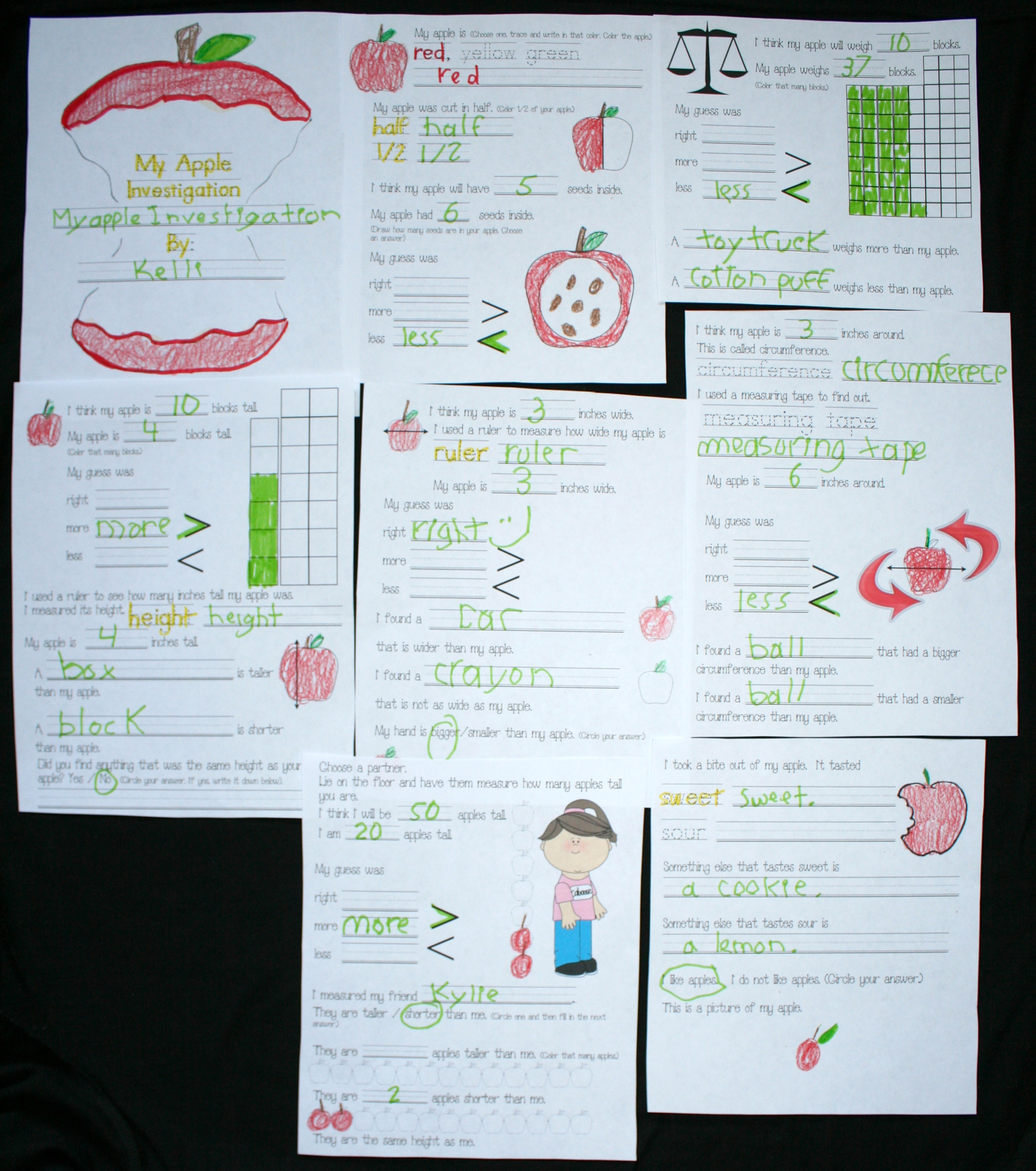 apple activities, apple lessons, apple booklet, measuring apples, apple investigations, apple science, apple measurement, apple centers, apple booklet, measurment activities, measurment lessons, free common core state standards for math for kindergarten, common core state standards for 1st grade, 1.MD.1, !.MD.2, K.MD.1a, K.MD.2, weighing activities, ruler activities,