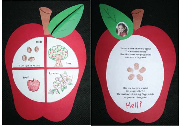 apple activities, common core apples, apple lessons, apple centers, apple crafts, apple arts and crafts, apple bulletin boards, apple pie activites, apple centers, life cycle of an apple crafts, life cycle of an apple priintables, life cycle of an apple activities, life cycle of an apple arts and crafts