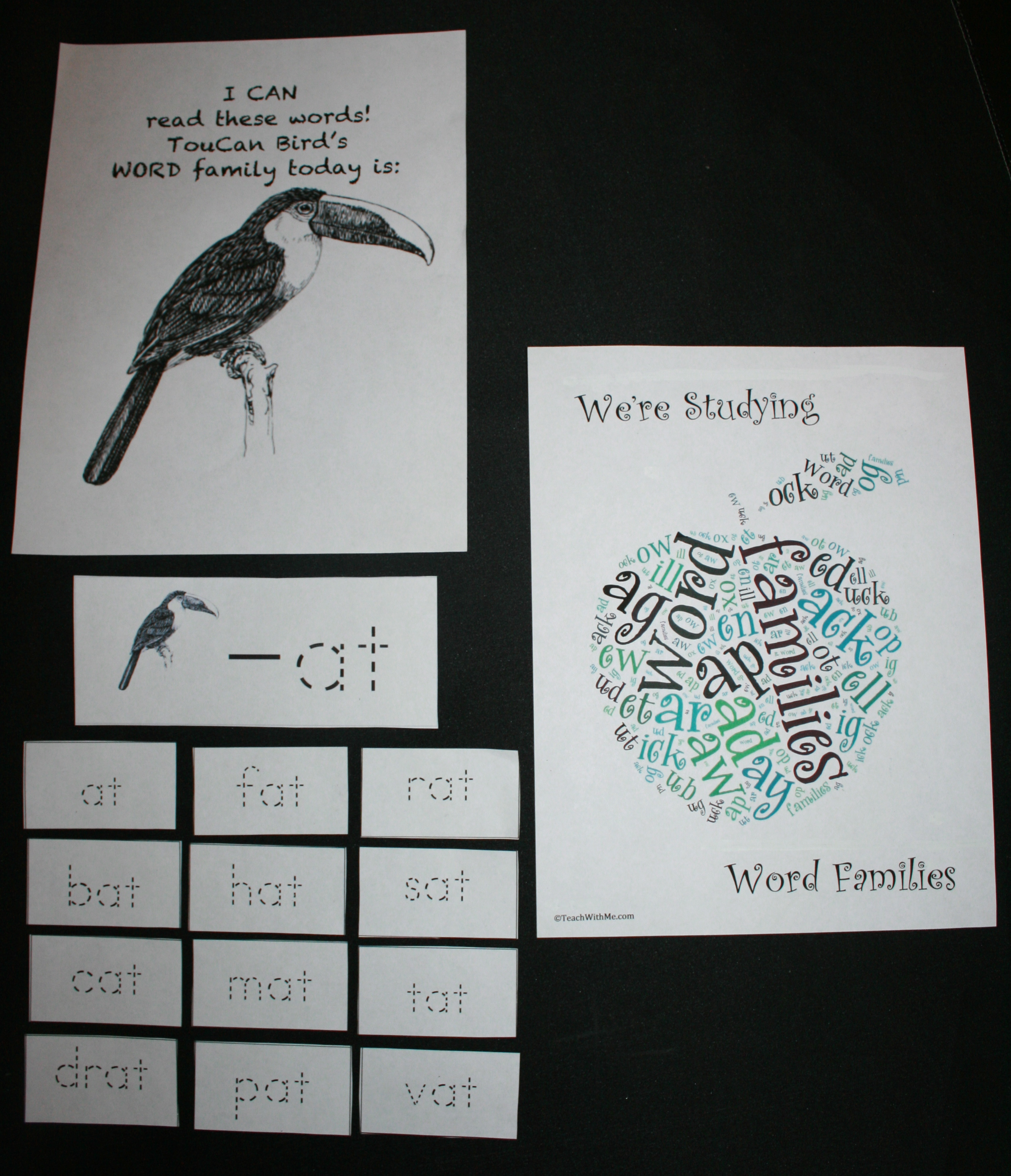 word families, word family activities, word family ideas, word family word cards, word family posters, word family flashcards, word family worksheets, word family lessons, word family booklets, word family word wall, word family folders, word family anchor charts, word family games, word family word art, word family magic word wands,