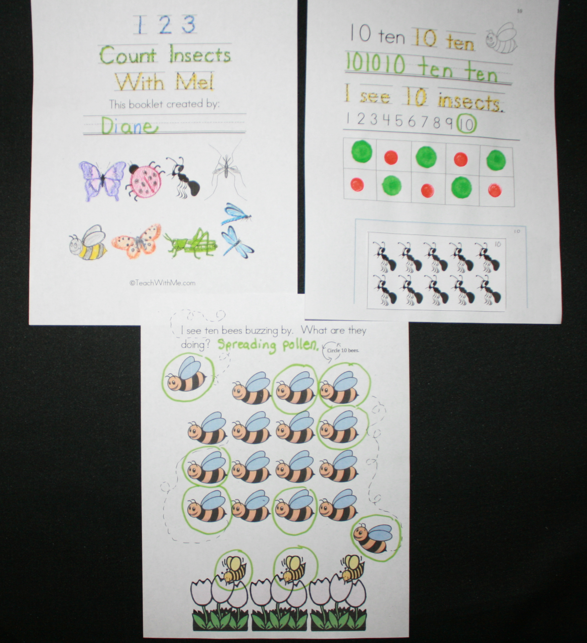 counting booklet, counting activities, counting flowers, flower activities, flower ideas, flower lessons, counting frogs, frog activites, frog lessons, math centers, math booklets, frog ideas, flower ideas, bug lessons, insect lessons, bug ideas, insect ideas, bug booklet, insect booklet, counting bugs, counting insects, math centers, daily 5 activities for may, daily 5 activities for spring, writing activities for early elementary, math booklet,