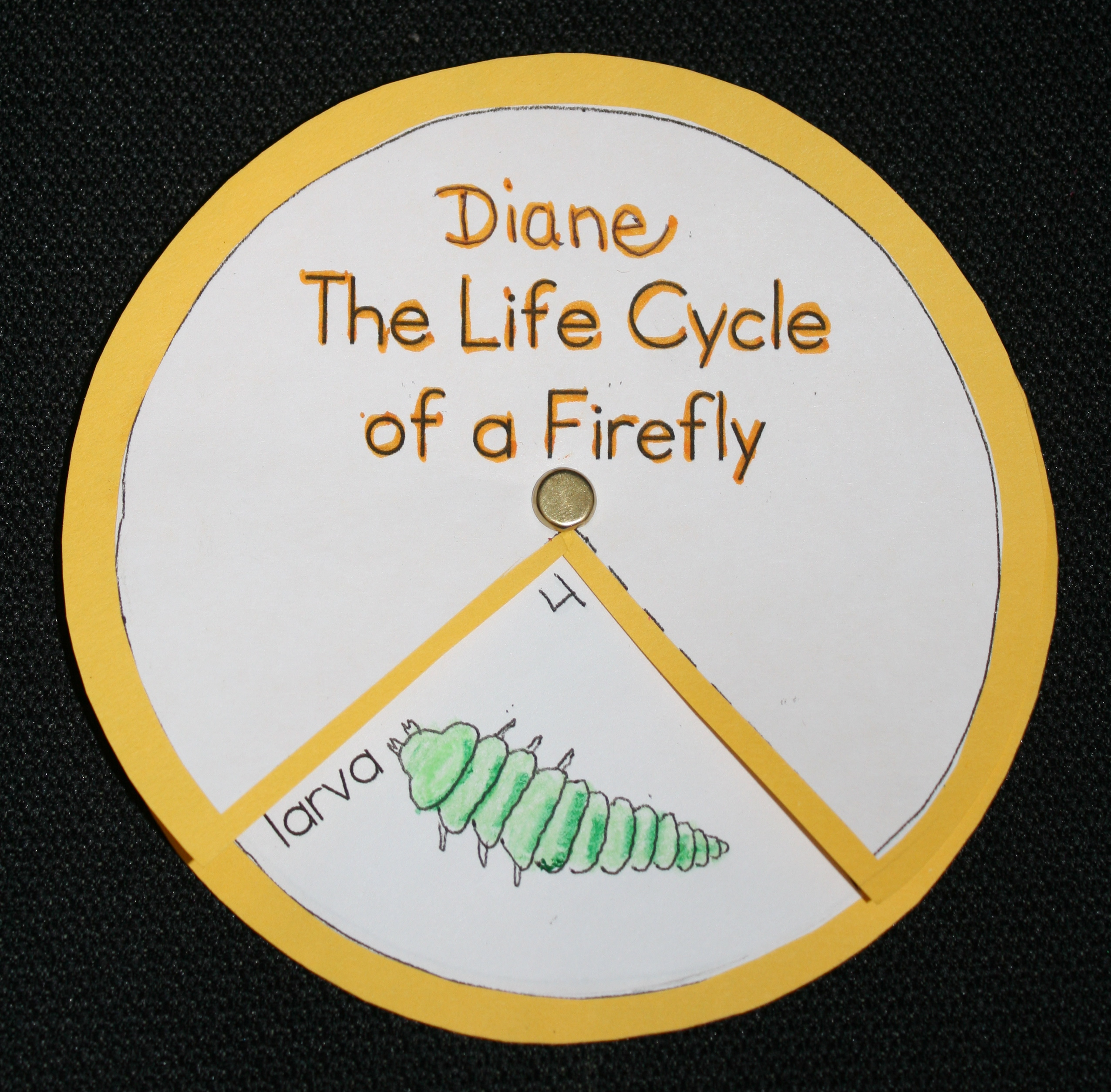 life cycle of a firefly, firefly life cycle wheel, firefly art project, firefly science activity, firefly activities, firefly lessons, firefly bulletin board, life cycle of a firefly, science ideas for early elementary, insect ideas, science centers, firefly booklet, firefly crafts, firefly art project, firefly centers, firefly activities,