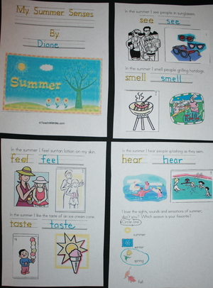 Easy Reader Booklet: My Summer Senses
