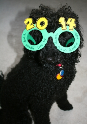 New Year Glasses