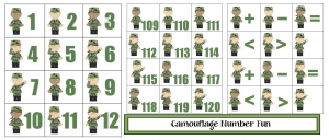 Camouflage Number Cards and Activities