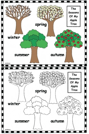 Seasons Of My Apple Tree Poster & Worksheet