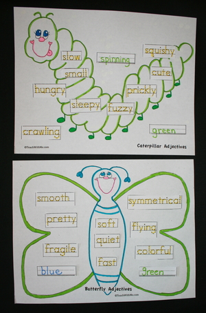 Butterfly Caterpillar Adjectives